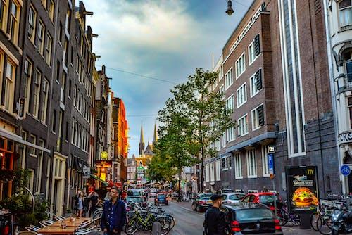 Imagine de stoc gratuită din Amsterdam, arbori, arhitectură, autoturisme