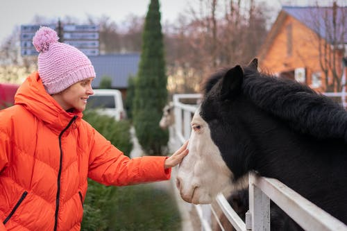Girl in an orange Jacket Standing Beside Black Horse