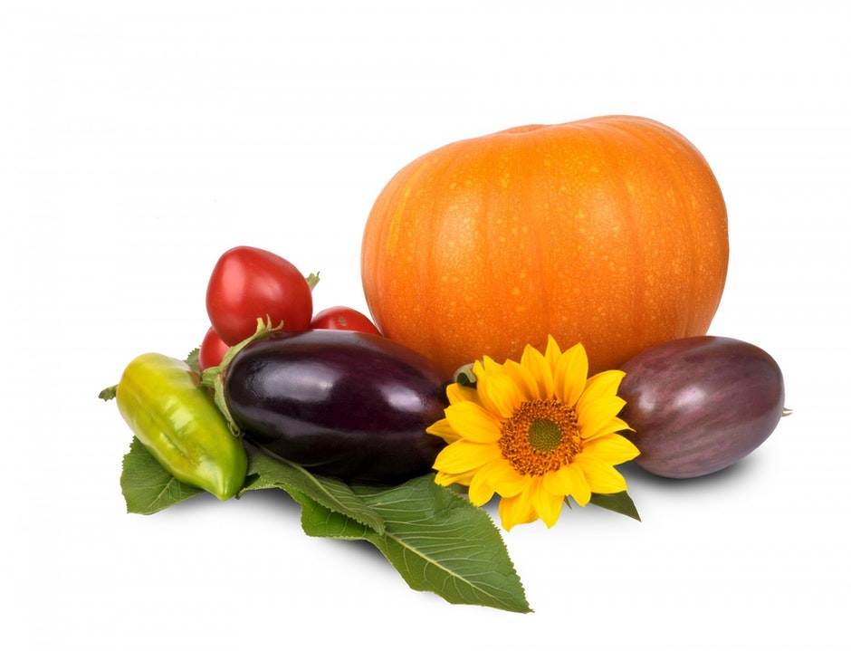 Orange Pumpking Purple Eggplant and Sunflower