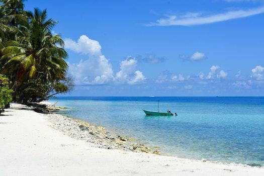 Free stock photo of beach, boat, maldives, palm trees