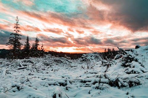 Gratis arkivbilde med solnedgang farger