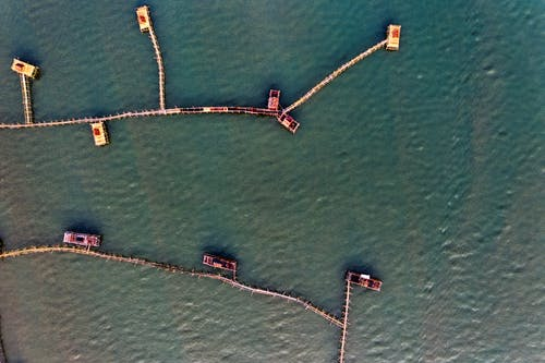 Aerial View of Piers