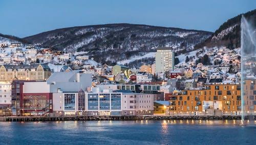 假期, 冬季, 城市, 城鎮 的 免费素材照片