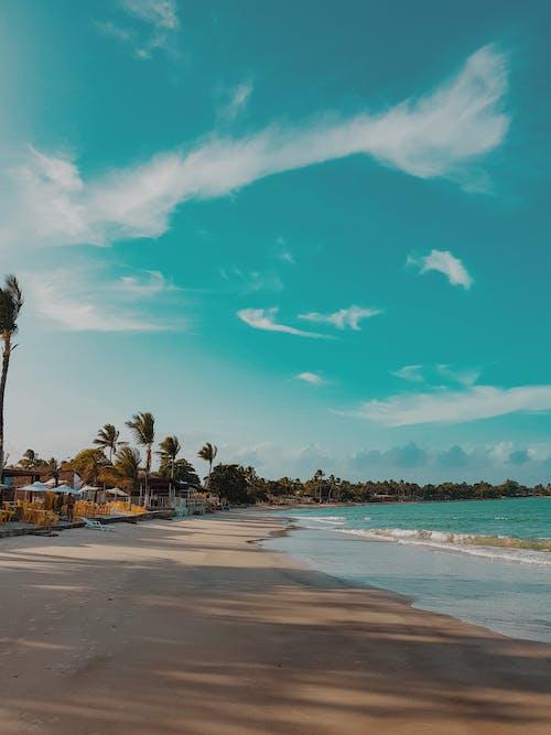 Tropical Beach Resort Under Blue Sky