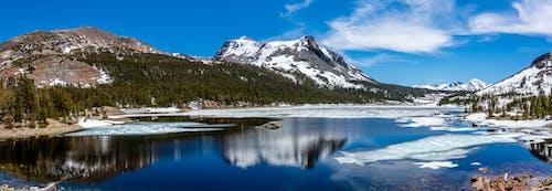 Kostnadsfri bild av berg, bergen, dagsljus, himmel