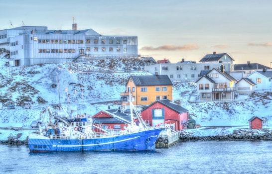Free stock photo of cold, snow, sea, city