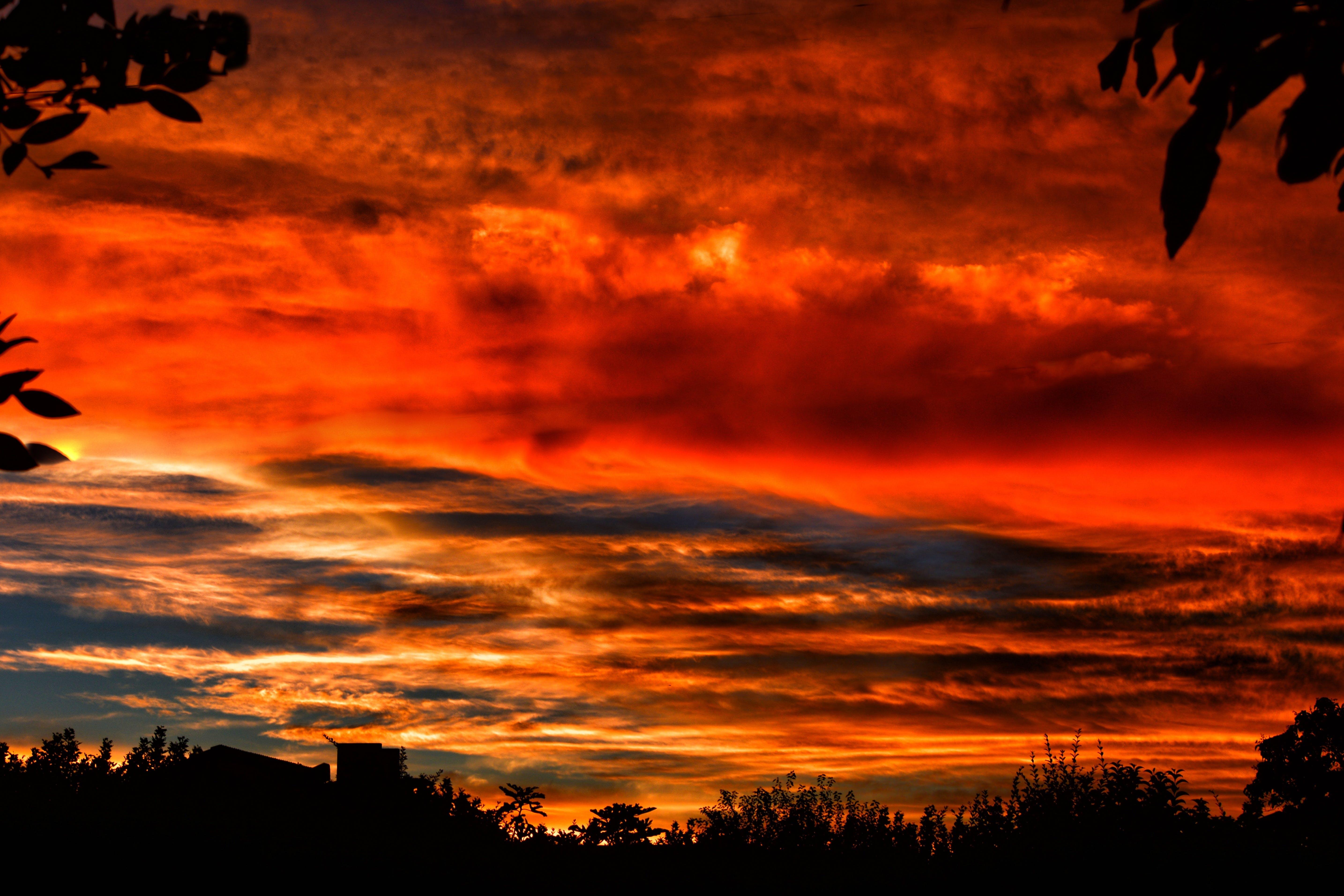 คลังภาพถ่ายฟรี ของ ดราม่า, ตะวันลับฟ้า, ต้นไม้, ทิวทัศน์เมฆ