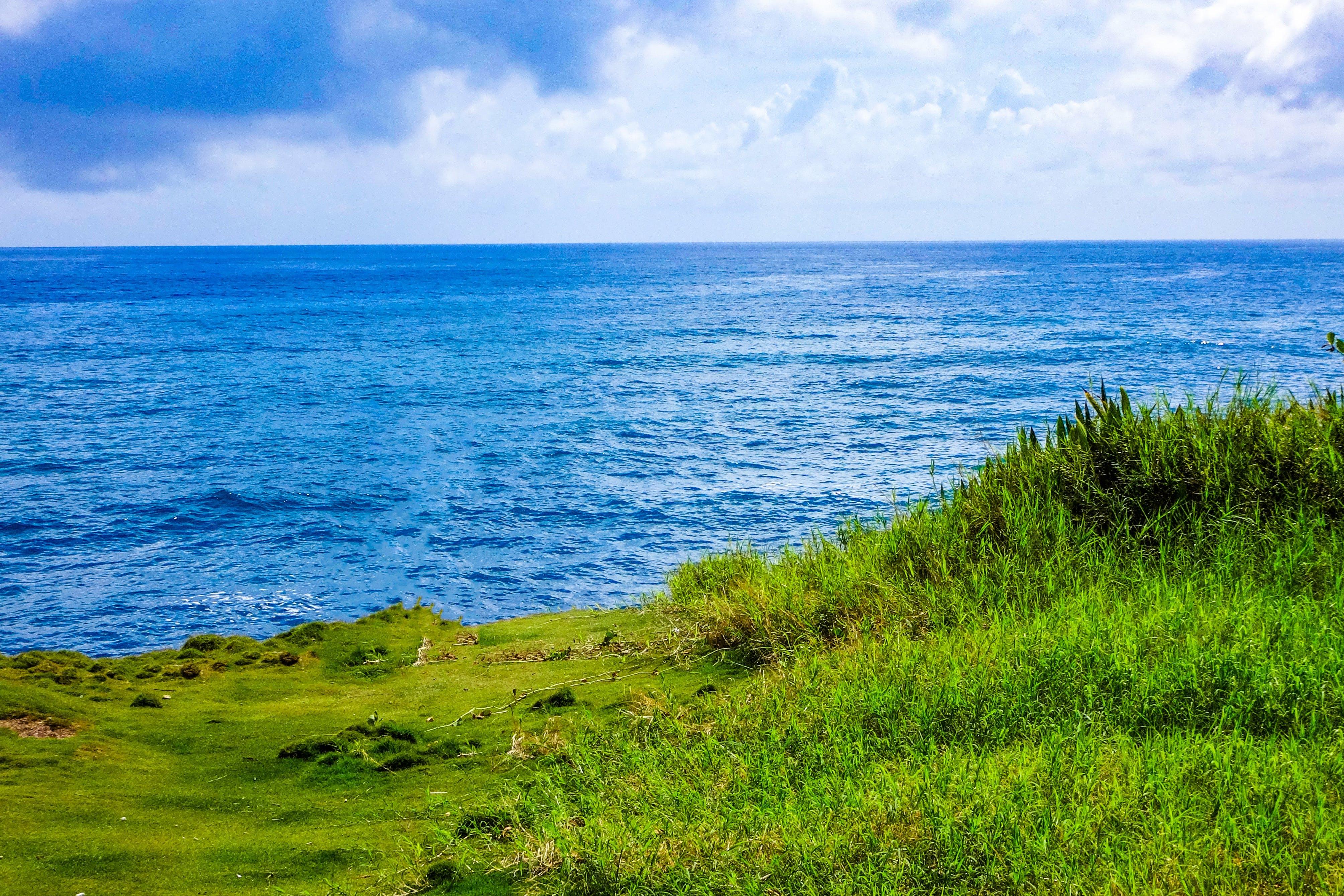 Gratis stockfoto met blikveld, daglicht, Golf, golven