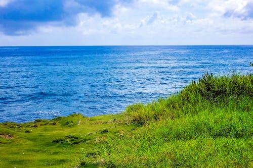 地平線, 夏天, 天性, 天空 的 免费素材照片