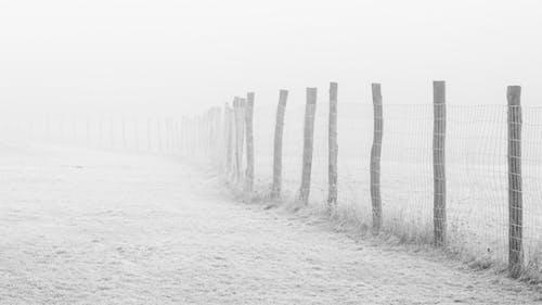çit, don, dondurucu, donmak içeren Ücretsiz stok fotoğraf