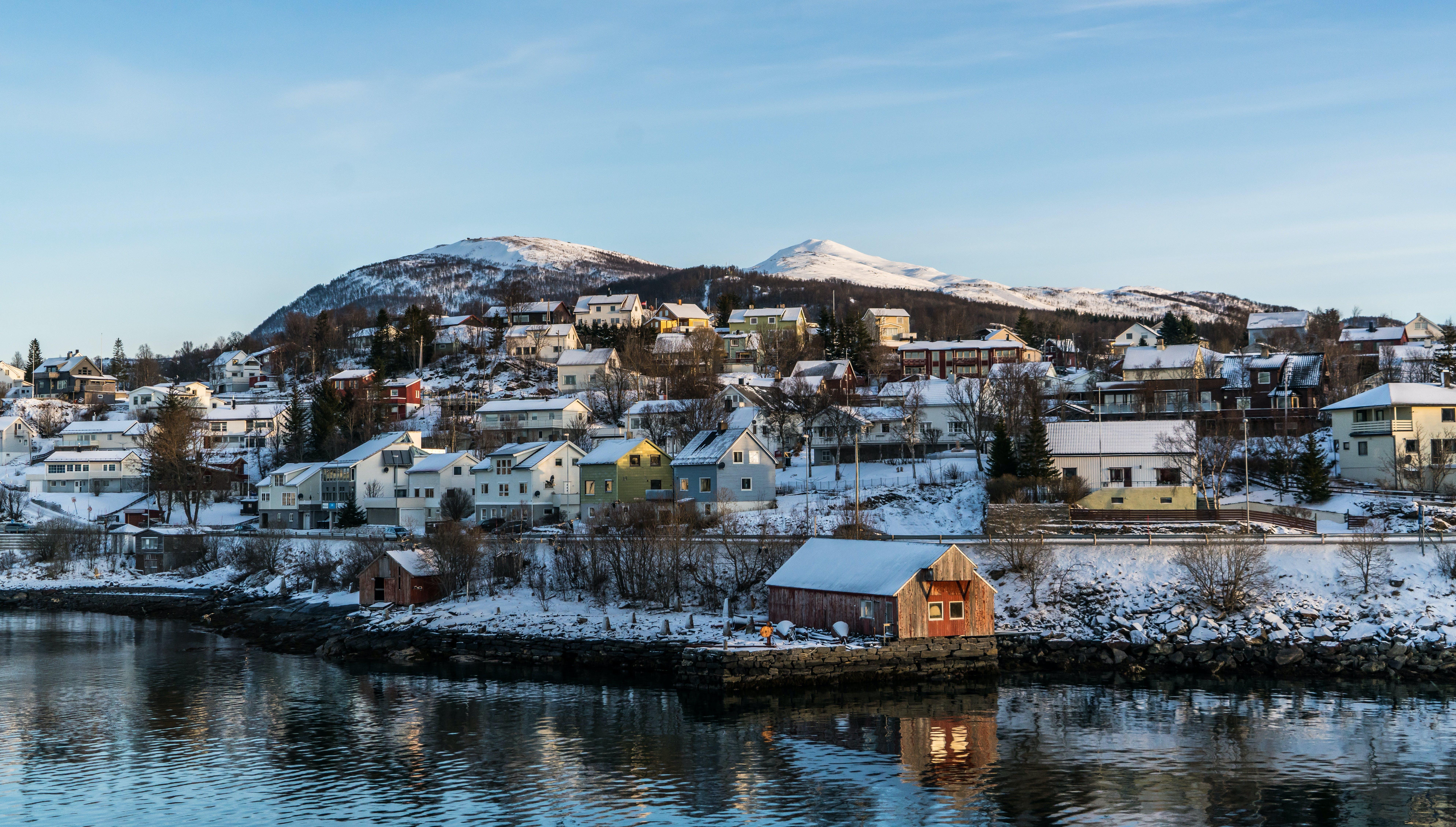 ウォーターフロント, スカンジナビア, タウン, ノルウェーの無料の写真素材