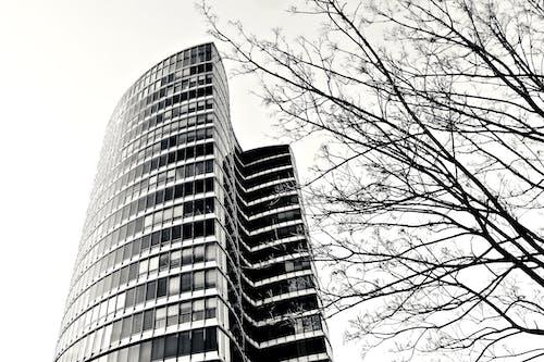Základová fotografie zdarma na téma architektura, budova, centrum města, černobílý