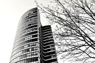 black-and-white, building, glass