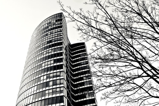 Free stock photo of black-and-white, building, glass, architecture