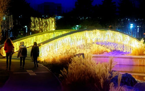 Immagine gratuita di alberi, arredamento, decorazione, decorazione natalizia