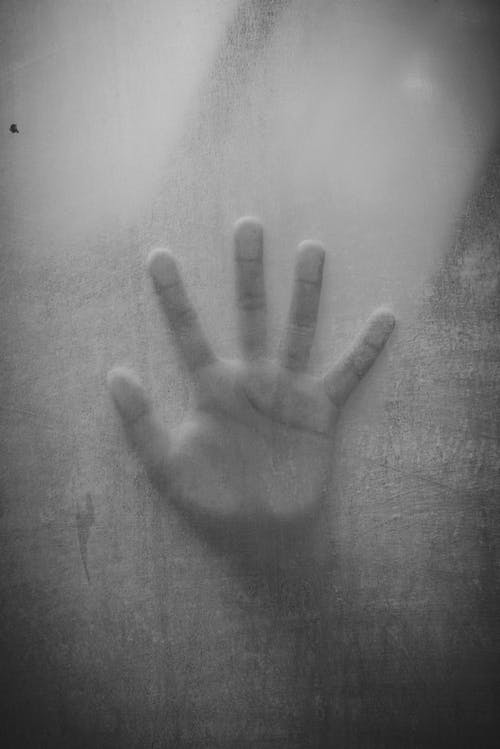 Graustufenfoto Der Linken Menschlichen Hand