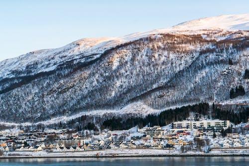 Základová fotografie zdarma na téma architektura, cestovní ruch, evropa, fjord