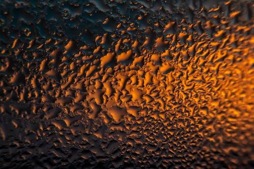 Free stock photo of light, macro, orange, water