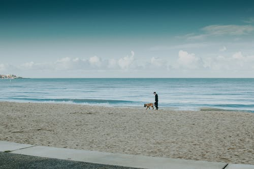 Man and Dog Walking on Beach Line