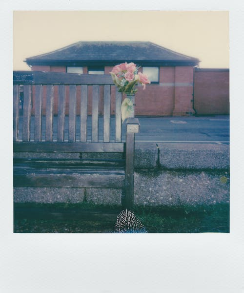 꽃, 꽃다발, 벤치, 부케의 무료 스톡 사진