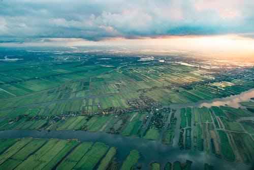Foto d'estoc gratuïta de aigua, camps de cultiu, foto aèria, herba