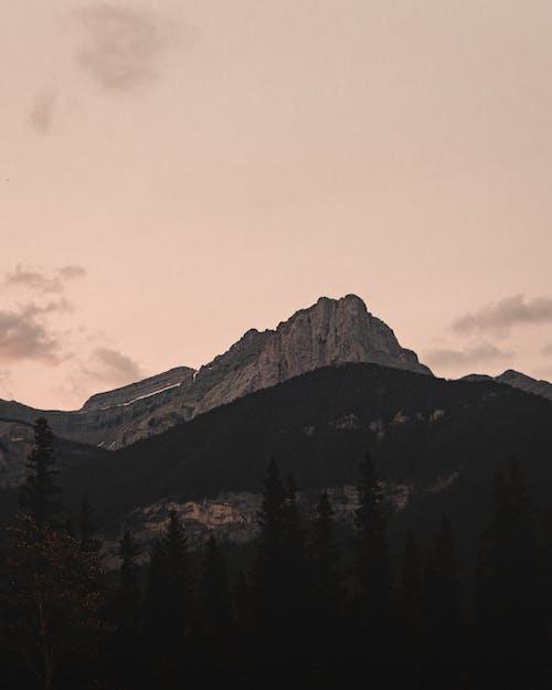 คลังภาพถ่ายฟรี ของ การท่องเที่ยว, ภูมิทัศน์ที่สวยงาม, ภูเขายักษ์, ยอดเขา