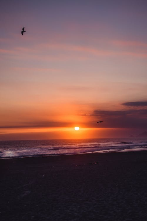 baggrund, praia, strand