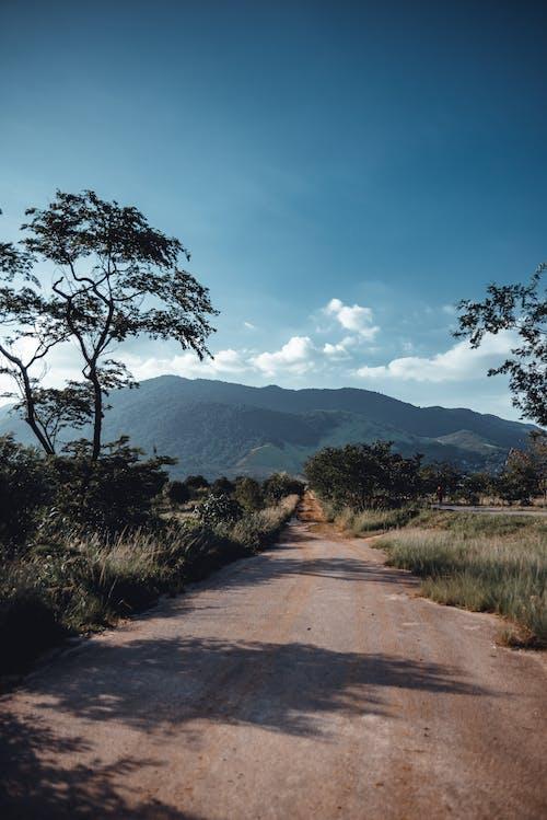 Foto stok gratis fotografia, kertas dinding, paisagem