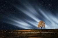landscape, nature, night