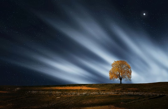 Nature wallpaper of landscape, nature, night, evening