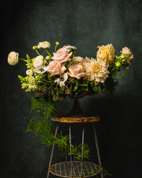 Free stock photo of dahlia, floral arrangement, roses