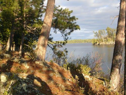Free stock photo of BWCA, Minnesota Lake, Northern Lake