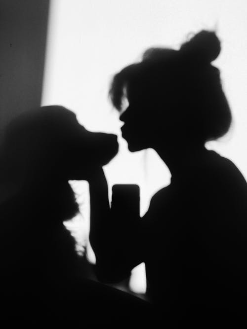 Silhouette of Person and Dog