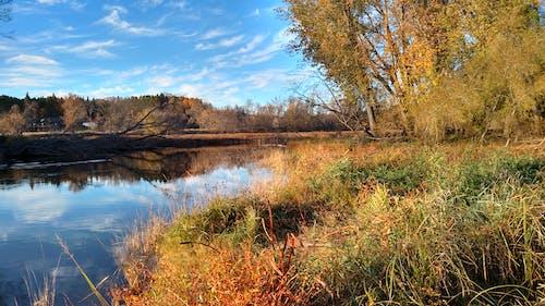 Free stock photo of Autumn River Scene, Blue Sky on River