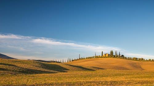 Základová fotografie zdarma na téma denní světlo, farma, hřiště, kopcovité kopce