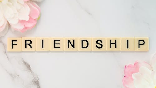Free stock photo of best friend, best friends, bestfriends, friendship