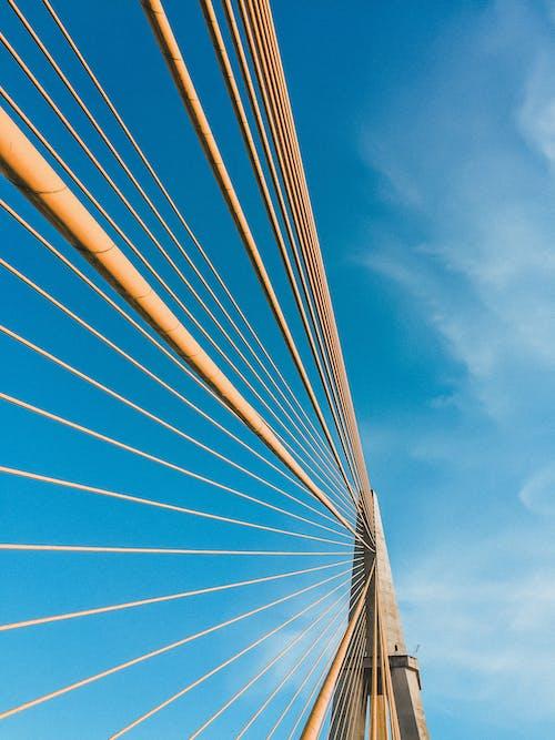 Free stock photo of amazon, bluesky, bridge