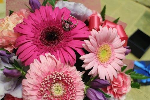 Photos gratuites de bague, demande, fleurs, floral