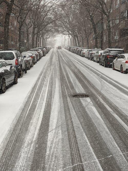 Základová fotografie zdarma na téma auta, královny, NY, nyc