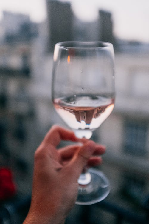 Close-Up Photo of Person Holding Wine Glass