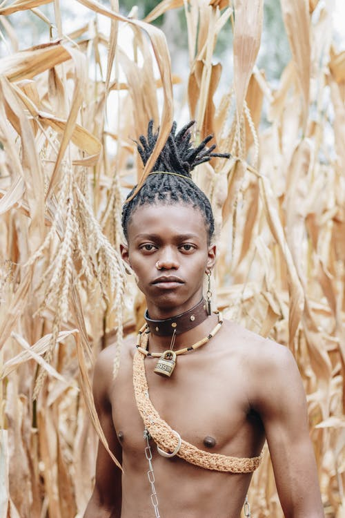 Photo Of Topless Man Beside Grain Crops