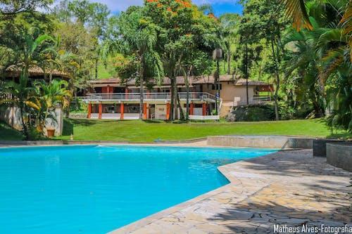 Immagine gratuita di acqua verde, conifere, piscina scavata