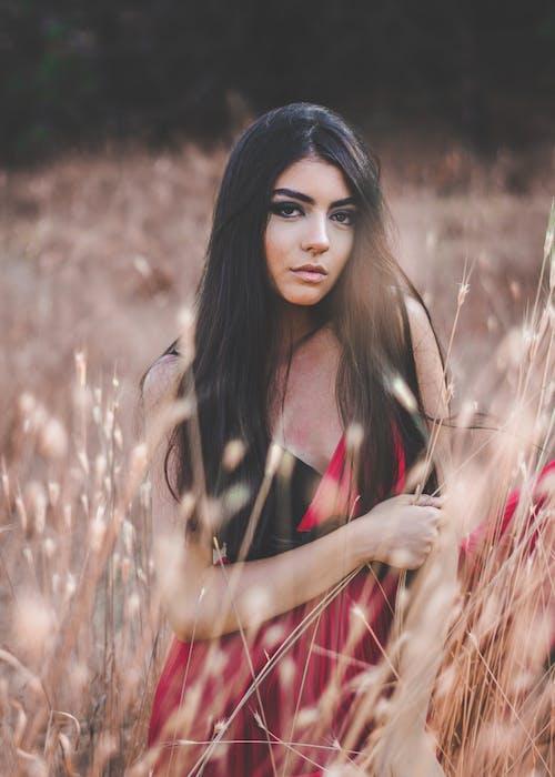 Ảnh lưu trữ miễn phí về cánh đồng, Chân dung, cỏ, đàn bà