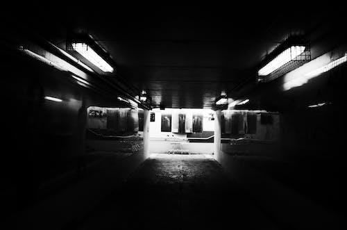 コントラスト, 地下道, 白黒, 通りの無料の写真素材