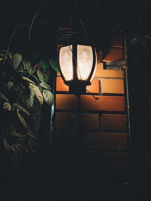 Free stock photo of light, shadow