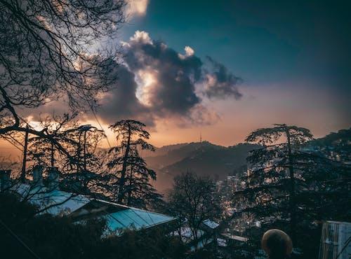 Free stock photo of #mobilechallenge, bamboo trees, Beautiful sunset, blue mountains