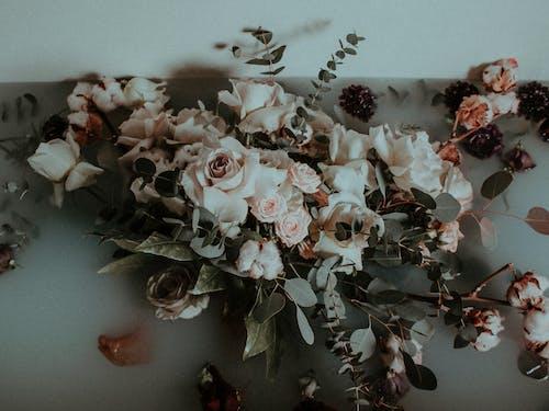 Immagine gratuita di arredamento, bouquet di fiori, composizione floreale, decorazione