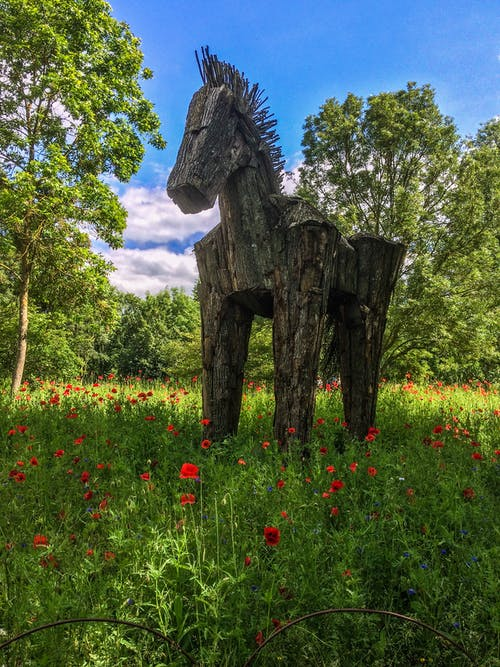 Free stock photo of grass, horse, poppies, sculpture