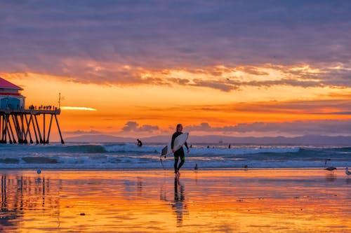 Person in Wetsuit Carrying Surfboard Walking along Beach