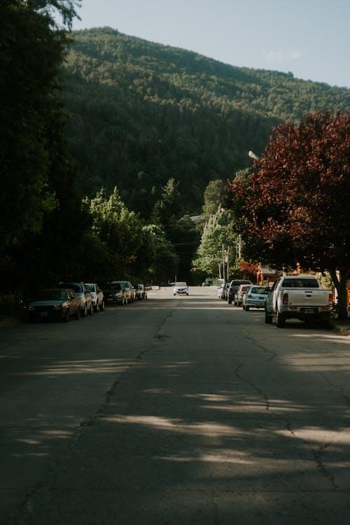 Безкоштовне стокове фото на тему «автомобілі, Вулиця, гора, Денне світло»